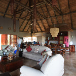 ...the villa invites the game reserve into the living space...